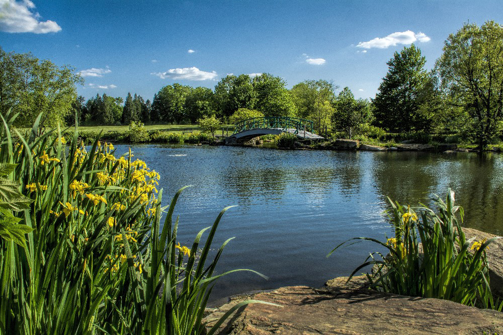 Cox Arboretum Metro Park Monet bridge by Dan Cleary of Cleary Creative Photography in Dayton Ohio
