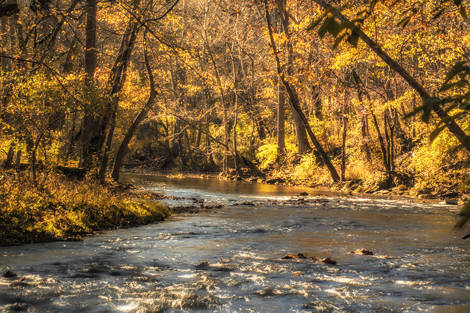 Little Miami River In The Fall by Dan Cleary of Cleary Creative Photography in Dayton Ohio