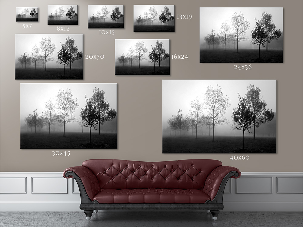 print sizes and prices cleary creative photography. Black Bedroom Furniture Sets. Home Design Ideas